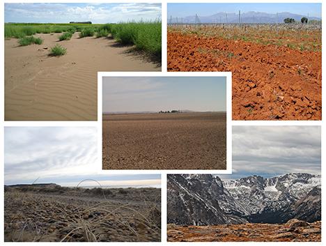 Pc1 ficha 04 sistema unificado de clasificaci n de suelos casagrande cremaschi saenz - Tipos de suelo para casa ...